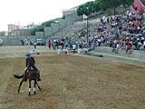 Feria Real (agosto) 6