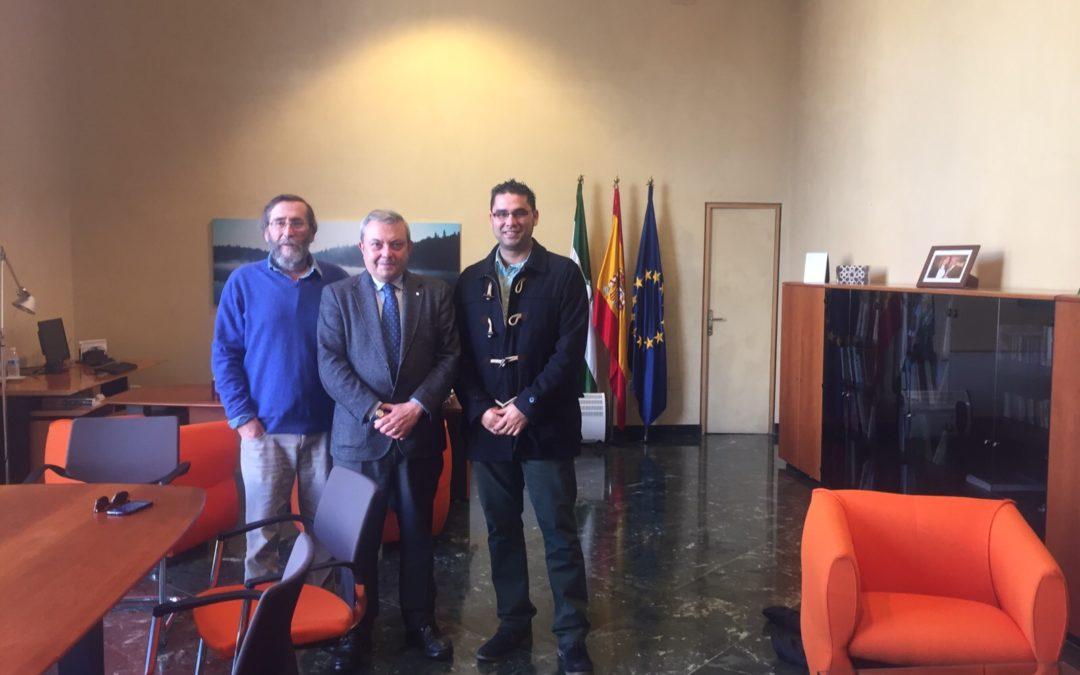 Reunión con el Sr. Delegado de Cultura de la Junta de Andalucía. 1